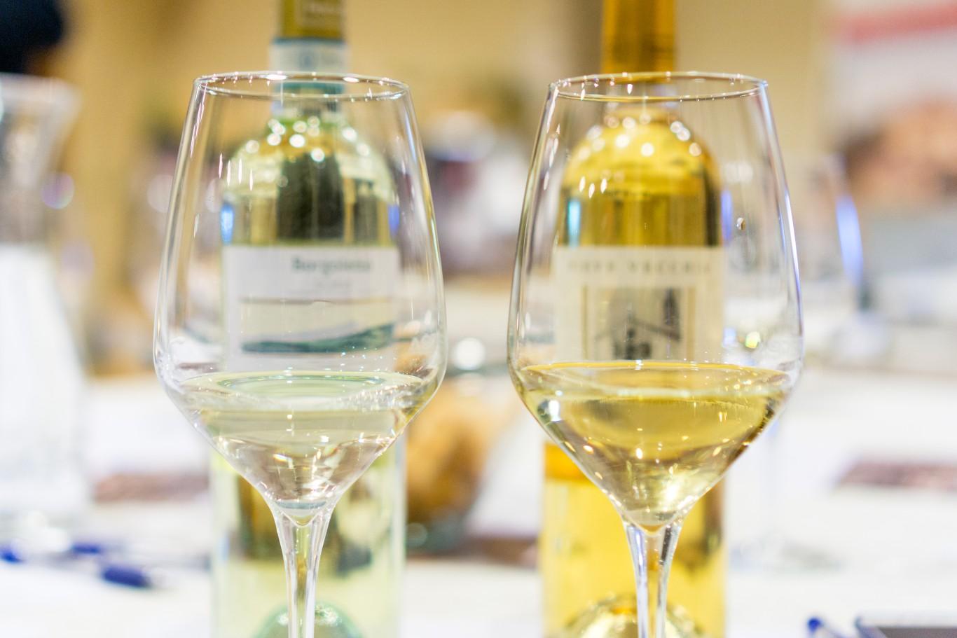 Corso Degustazione Vino Padova7