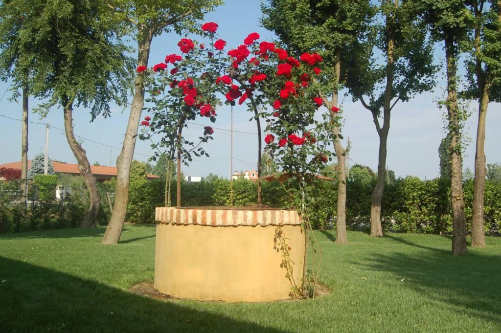 Gallery Casa Tormene Allestimenti Giardini22