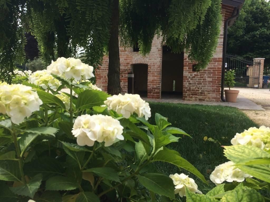 Gallery Casa Tormene Primavera18