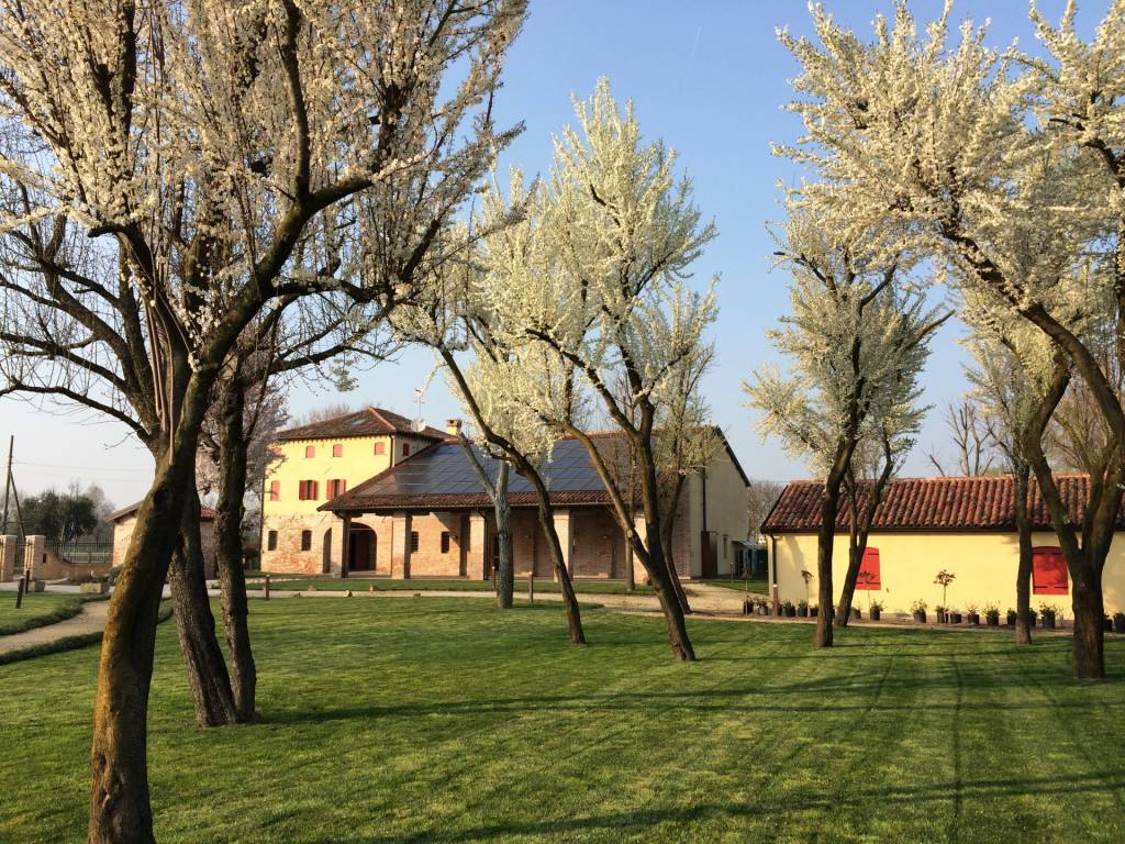 Gallery Casa Tormene Primavera20