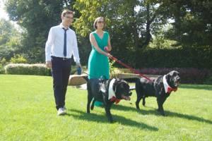 Casa Tormene Location Dog Friendly