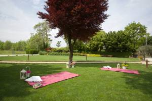 Picnic Wedding Blog3