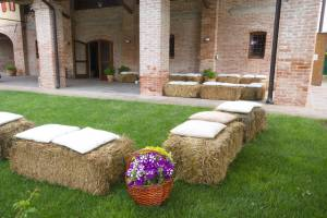 Picnic Wedding Blog4