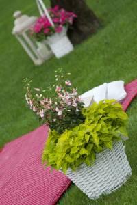 Picnic Wedding Blog5