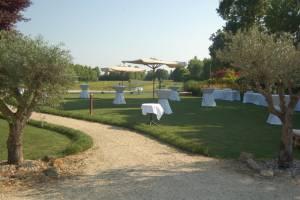 Picnic Wedding Blog8