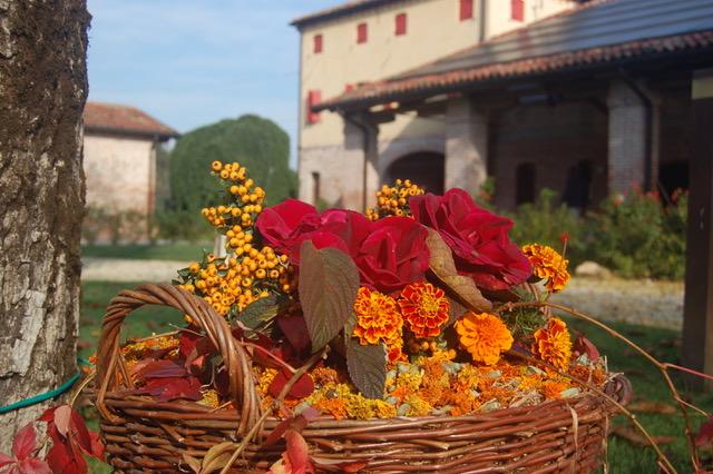 location per matrimonio in autunno a Padova - Casa Tormene