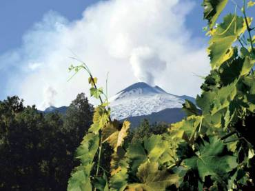 Degustazioni vino a Casa Tormene – inverno 2020