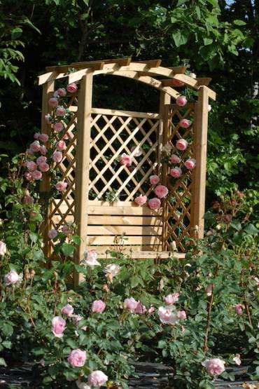 Un giardino di rose a Padova