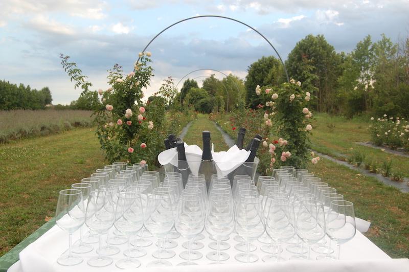 location matrimonio padova