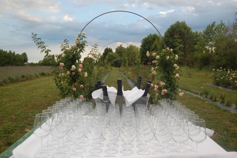 Cena Tra Le Rose Selvazzano Dentro